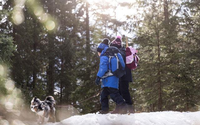 brand new 8e7a0 16c4f Kinder Fleecejacken online kaufen – JACK WOLFSKIN