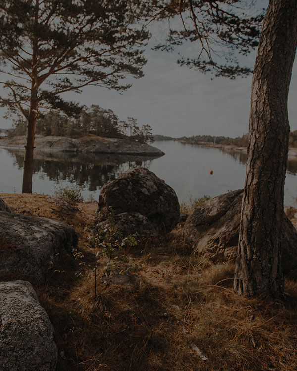 SEITE NICHT GEFUNDEN – JACK WOLFSKIN